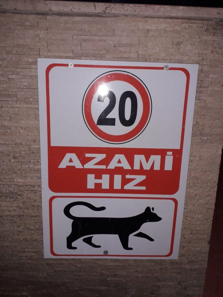 котячі знаки в Туреччині