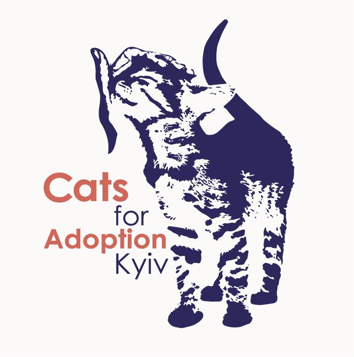 Правила адопції котиків