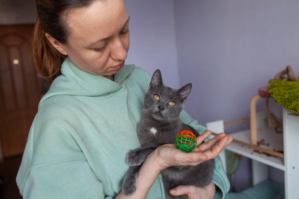 котик Зайка