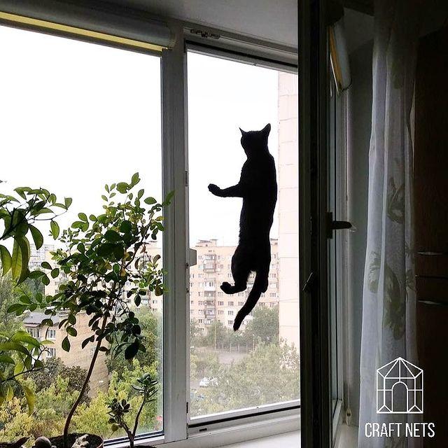 Захист на вікнах