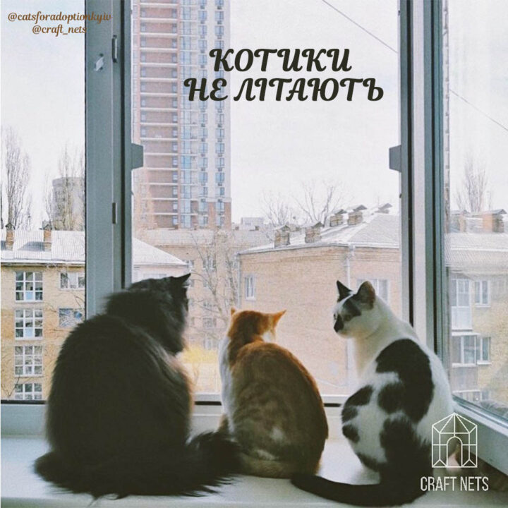 Захист на вікнах Антикіт